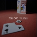 TORN CARD EVOLUTION  -  JUAN PABLO